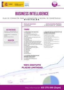 BUSINESS INTELIGENCE